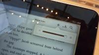 Apple iPad 29