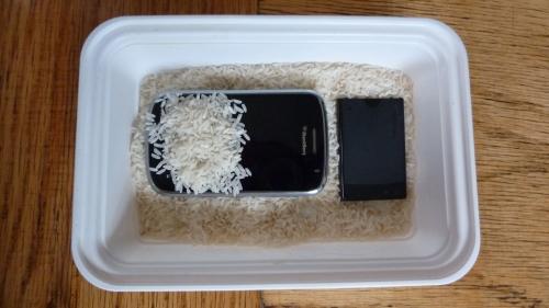 BlackBerry rice moisture